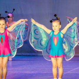 Костюм Бабочки, танец «Бабочки»